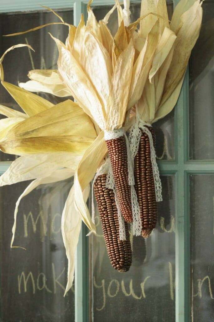 Copper Indian Corn and Lace