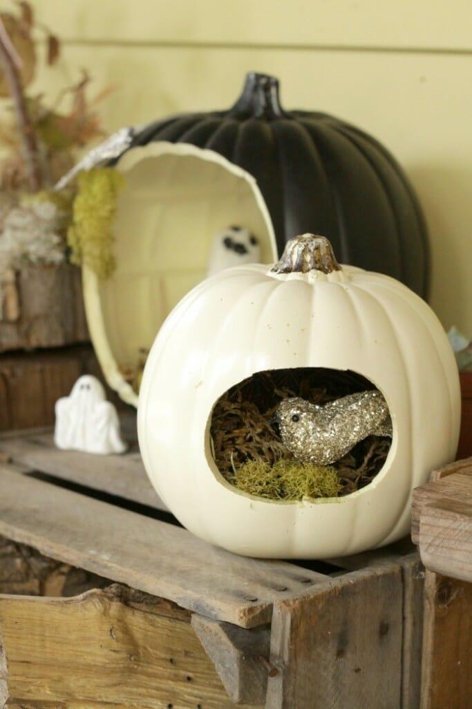 Halloween nest pumpkin