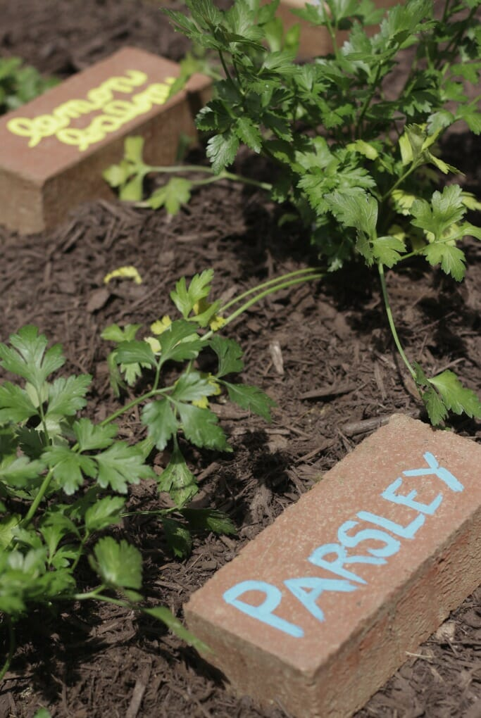 Upcycled Brick Herb Markers